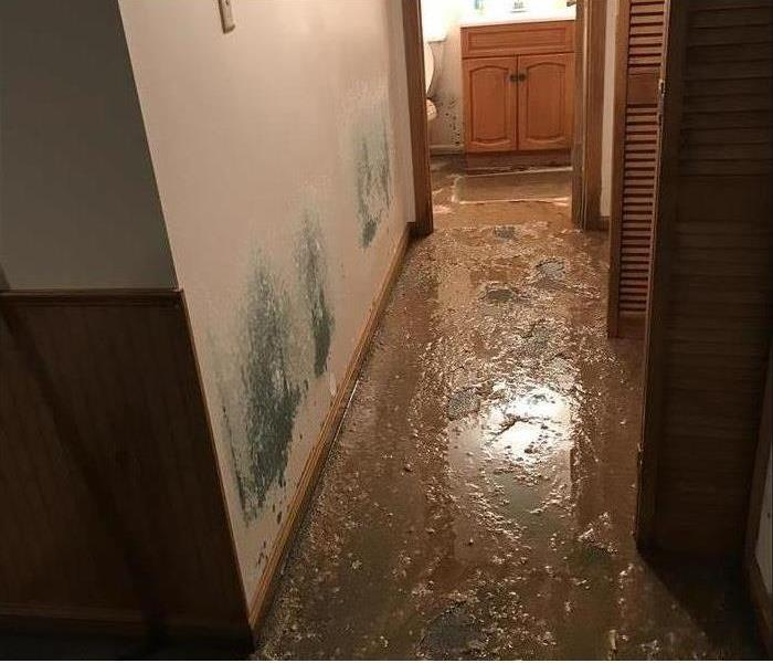 mud-filled hallway, mold stained walls